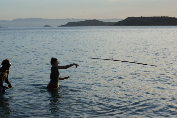 spear-fishing-palm-island