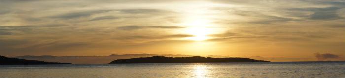 sunset-palm-island